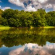 Reflection of trees and clouds in the Potomac River, at Balls Bl — Stock Photo #52599425