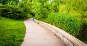 Grasses and trees along a path through Patterson Park, Baltimore — Stock Photo