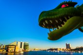 Green serpent over the Inner Harbor, of Baltimore, Maryland.  — Stock Photo