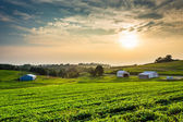Hazy summer sunset over farm fields in rural York County, Pennsy — Stock Photo