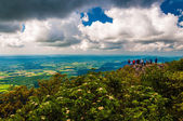 Large group of hikers on Stony Man Mountain, in Shenandoah Natio — Stock Photo