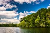 Loch Raven Reservoir in Baltimore, Maryland.  — Stock Photo