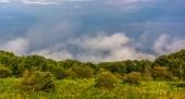 Gamla trasaberg i moln, sett från skyline drive i shenandoa — Stockfoto