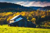 Old barn and spring colors in the Shenandoah Valley, Virginia.  — Stock Photo