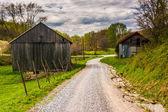 Old barns along a dirt road in rural York County, Pennsylvania.  — Stock Photo