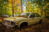 Old car and autumn color in a junkyard.  — Stock Photo