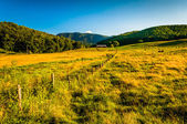 Pasture and view of the Blue Ridge Mountains in the Shenandoah V — Stock Photo