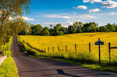 Paved road through fields and hills at Antietam National Battlef — Stock Photo