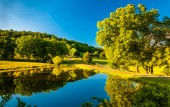 Pond and driveway to a farm in the Shenandoah Valley, Virginia. — Stock Photo