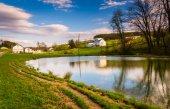 Pond in rural York County, Pennsylvania.  — Stock Photo
