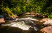 Rapids along Gunpowder Falls, in Baltimore County, Maryland.  — Stock Photo