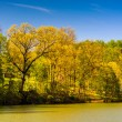 Spring color along Lake Roland at Robert E. Lee Memorial Park in — Stock Photo #52601389
