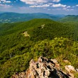Summer view of the Blue Ridge Mountains from Little Stony Man, a — Stock Photo #52603783