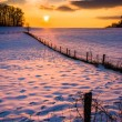 Sunset over a fence in a snow covered farm field in rural Carrol — Stock Photo #52605113