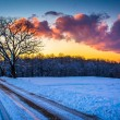 Sunset over trees and a snow covered field along a dirt road in  — Stock Photo #52605911
