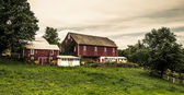 Rustic old barns on a farm in rural York County, Pennsylvania.  — Stock Photo