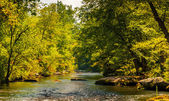 Serene view of the Gunpowder Falls, in Baltimore County, Marylan — Stock Photo