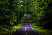 Skyline Drive in a heavily shaded forest area of Shenandoah Nati — Stock Photo