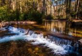 Small cascade on a stream in Caledonia State Park, Pennsylvania. — Stock Photo