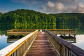 Small pier at Lake Oolenoy, Table Rock State Park, South Carolin — Stock Photo