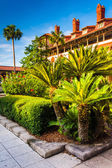 Small palm trees and building at Flagler College, in St. Augusti — Stock Photo