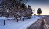 Snow covered trees and field along a dirt road in rural York Cou — Stock Photo