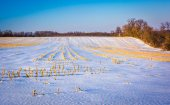 Snow-covered farm field in rural York County, Pennsylvania. — Stock Photo