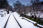 Snow-covered railroad track and creek in rural Carroll County, M — Stock Photo