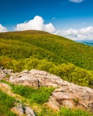 Spring colors on a mountain in Shenandoah National Park, Virgini — Stock Photo