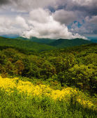 Spring view of the Appalachians from Skyline Drive in Shenandoa — Stock Photo
