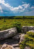 Nubes de tormenta sobre rocas oso preservar, palestra nacional monongahela — Foto de Stock