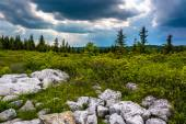 Storm clouds over Bear Rocks Preserve, Monongahela National Fore — Stock Photo
