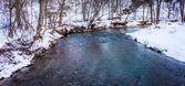 поток в зимний период в сельских йорк каунти, штат пенсильвания. — Стоковое фото