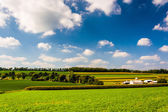 Summer view of rolling hills and farm fields in rural York Count — Stock Photo