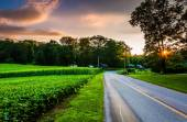 Sunset over a country road in Southern York County, Pennsylvania — Stock Photo