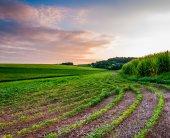 Sunset sky over farm fields in Southern York County, Pennsylvani — Stock Photo