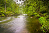 The Gunpowder River near Prettyboy Reservoir in Baltimore County — Stock Photo