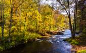The Gunpowder River, in Baltimore County, Maryland.  — Stock Photo