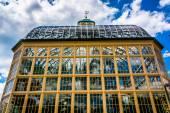 говард питерс ролингс консерватории в друид парк хилл, балт — Стоковое фото