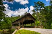 The covered bridge above High Falls, in Dupont State Forest, Nor — Stockfoto