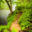 Trail along the Gunpowder River, near Prettyboy Reservoir in Bal — Stock Photo #52611239