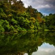 Trees and storm clouds reflecting in a pond in York County, Penn — Stock Photo #52612213