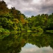 Trees and storm clouds reflecting in a pond in York County, Penn — Stock Photo #52612217