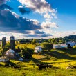 View of cows on a farm in the rolling hills of rural York County — Stock Photo #52614485