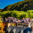 View of historic buildings on Shenandoah Street in Harpers Ferry — Stock Photo #52614915