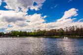 The lake at Washingtonian Center in Gaithersburg, Maryland.  — Stockfoto