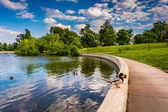 The pond at Patterson Park in Baltimore, Maryland.  — Stockfoto