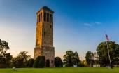 The singing tower in Carillon Park, Luray, Virginia. — Stockfoto