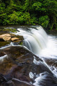 The top of Hooker Falls on the Little River in Dupont State Fore — ストック写真