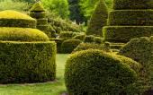 Topiary garden at Longwood Gardens, PA.  — Stock Photo